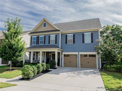 Tega Cay Single Family Home For Sale: 2166 Bluebell Way