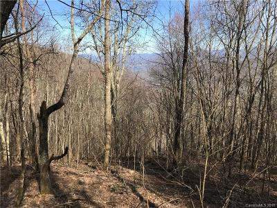 Haywood County Residential Lots & Land For Sale: 17 Quail Ridge Drive #Lot #17