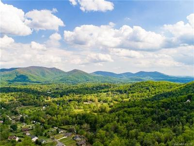 Asheville Residential Lots & Land For Sale: 99999 Fox Den Road #2
