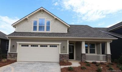 Tega Cay Single Family Home For Sale: 1521 Liberty Row Drive #CAD 89