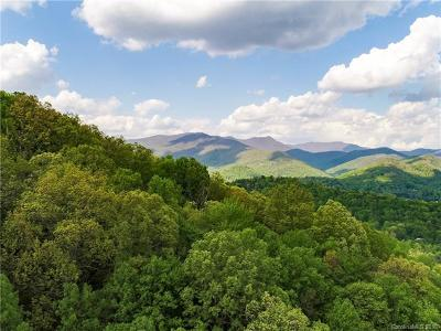 Asheville Residential Lots & Land For Sale: 99999 Fox Den Road #3