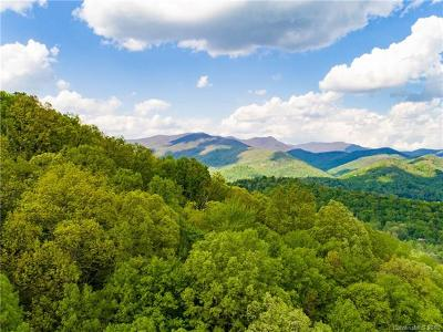 Asheville Residential Lots & Land For Sale: 99999 Fox Den Road #5