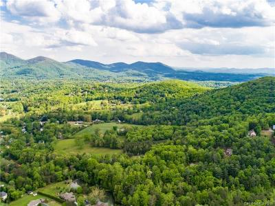 Asheville Residential Lots & Land For Sale: 99999 Fox Den Road #6