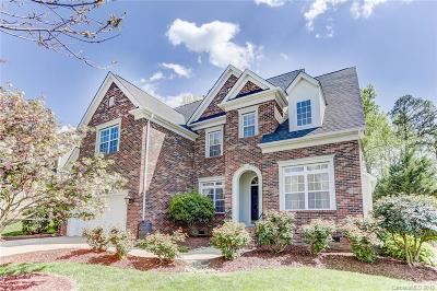 Fort Mill Single Family Home Under Contract-Show: 107 Lachlan Drive
