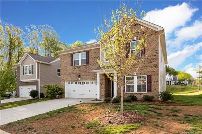 Charlotte Single Family Home For Sale: 11202 Pond Valley Court