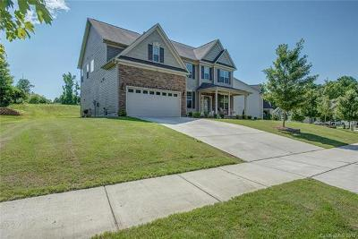 Mooresville Single Family Home For Sale: 156 Branchview Drive
