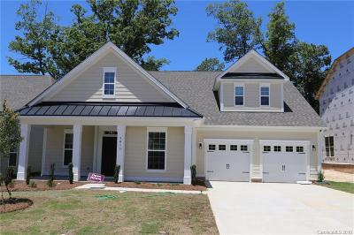 Tega Cay Single Family Home For Sale: 5013 Waterloo Drive #40