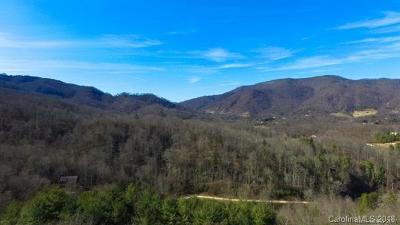 Candler Residential Lots & Land For Sale: 209 Serenity Mountain Drive