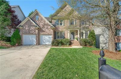 Ballantyne Meadows Single Family Home For Sale: 13928 Ballantyne Meadows Drive