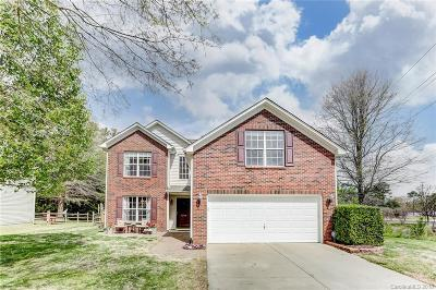 Tega Cay Single Family Home For Sale: 7242 Cascading Pines Drive