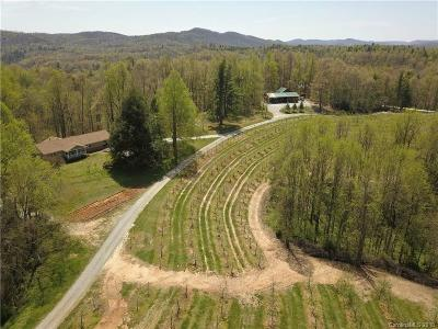 Buncombe County, Haywood County, Henderson County, Madison County Residential Lots & Land For Sale: 298 Macedonia Church Road