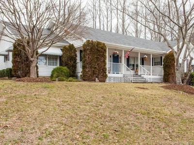 Hendersonville Single Family Home For Sale: 67 Chestnut Lane