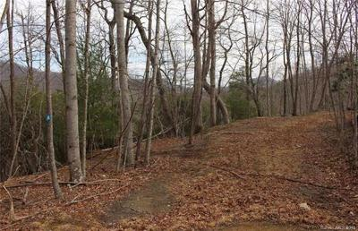 Arden Residential Lots & Land For Sale: 724 Streamside Drive #Lot 35