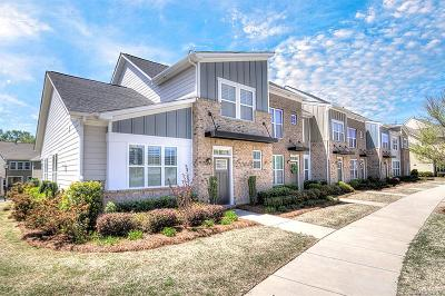 Charlotte Condo/Townhouse For Sale: 3827 Willow Green Place