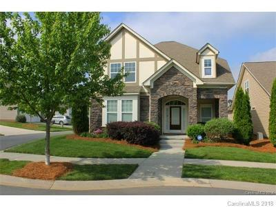 Huntersville Single Family Home For Sale: 9728 Skybluff Circle