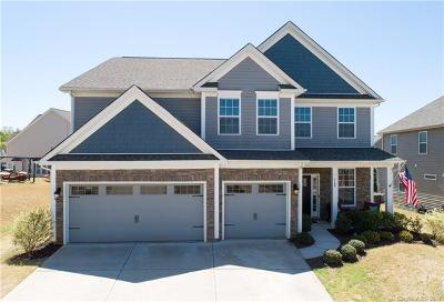 Tega Cay Single Family Home For Sale: 708 Fresia Drive