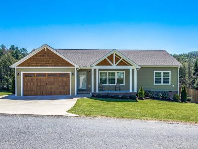 Hendersonville Single Family Home For Sale: 62 Silver Lining Way
