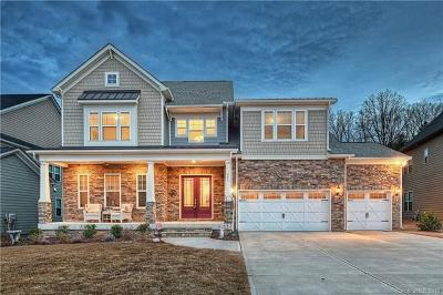 Fort Mill, Rock Hill Single Family Home For Sale: 223 Copper Hawk Court