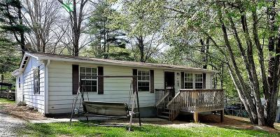 Hendersonville Single Family Home For Sale: 34 Bunny Trail
