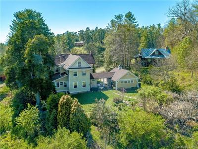 Weaverville Single Family Home For Sale: 494 Clarks Chapel Road