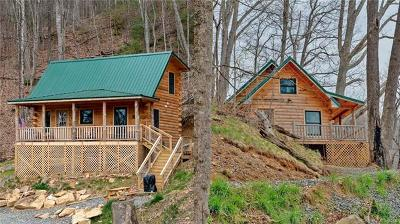 Weaverville Single Family Home For Sale: 355 Moody Cove Road