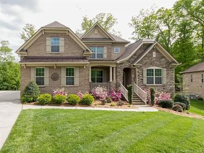Waxhaw Single Family Home For Sale: 4100 Hoffmeister Drive #34