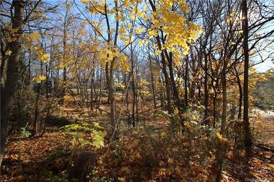 Asheville Residential Lots & Land For Sale: 9999 Homeway Road #221, 223