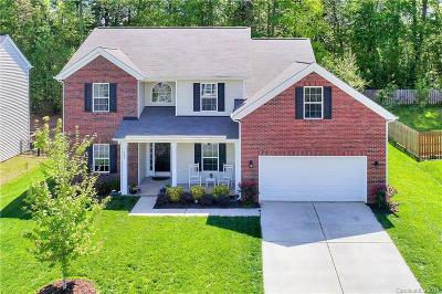 Clover, Lake Wylie Single Family Home For Sale: 1047 Hallow Lake Terrace #179