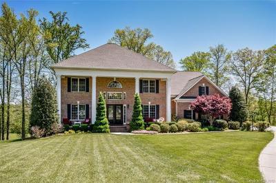 Statesville Single Family Home For Sale: 230 Cedar Lake Drive