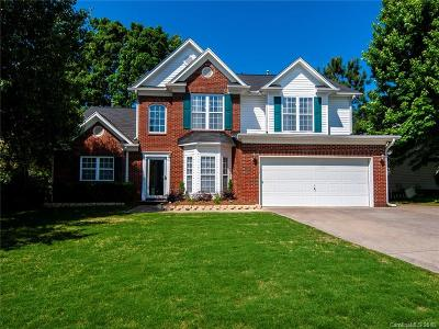 Fort Mill Single Family Home Under Contract-Show: 3708 Leela Palace Way