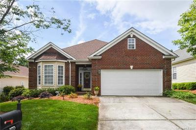 Fort Mill, Rock Hill Single Family Home For Sale: 372 Garnet Court