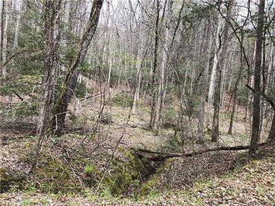 Bat Cave, Black Mountain, Chimney Rock, Columbus, Gerton, Lake Lure, Mill Spring, Rutherfordton, Saluda, Tryon, Union Mills Residential Lots & Land For Sale: Lot 291 Oriole Drive #291
