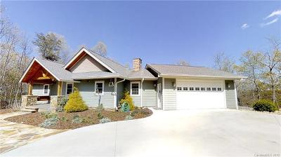 Hendersonville Single Family Home For Sale: 227 Brians View Drive