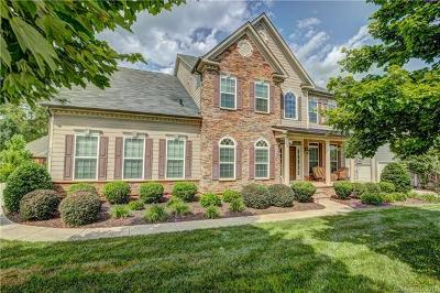 Fort Mill Single Family Home For Sale: 373 Fischer Road