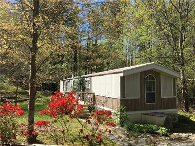 Fairview Single Family Home For Sale: 5 Mountain Country Acres Road