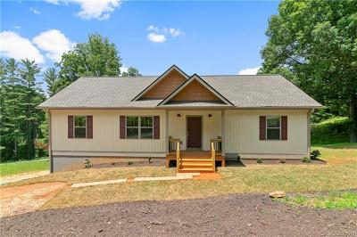 Mills River Single Family Home For Sale: 51 Cairens Ridge Drive