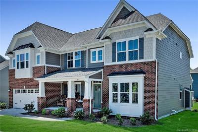 Fort Mill Single Family Home For Sale: 375 Ayers Road