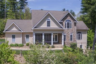 Hendersonville Single Family Home For Sale: 221 Kanuga Forest Drive