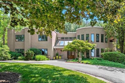 Asheville Single Family Home For Sale: 7 Blackberry Lane #2