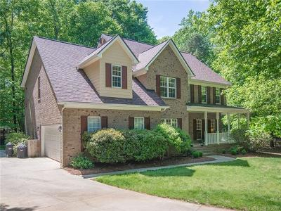 Fort Mill Single Family Home For Sale: 410 Farm Branch Drive