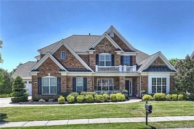 Waxhaw, Weddington Single Family Home For Sale: 10002 Chimney Drive