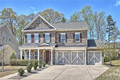 Tega Cay Single Family Home For Sale: 3076 Amaranth Drive