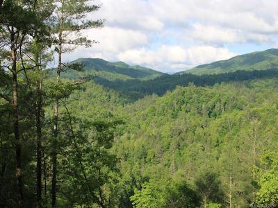 Hot Springs NC Residential Lots & Land For Sale: $119,900