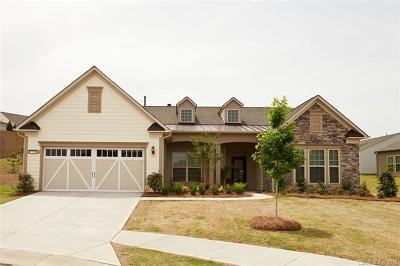 Fort Mill Single Family Home For Sale: 2178 Bud Court #217