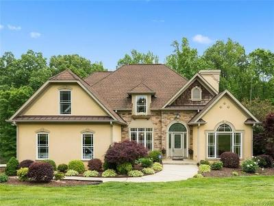 Waxhaw, Weddington Single Family Home For Sale: 6013 Stonepath Lane