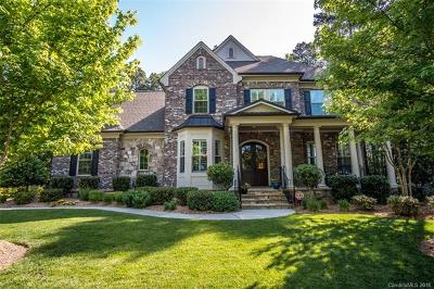 Huntersville Single Family Home For Sale: 13004 Long Common Parkway