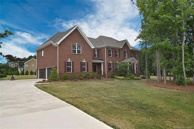 Waxhaw, Weddington Single Family Home For Sale: 4600 Bonner Drive