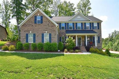 Denver Single Family Home For Sale: 4021 Halyard Drive