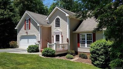 Hendersonville Single Family Home For Sale: 33 Old Applewood Lane