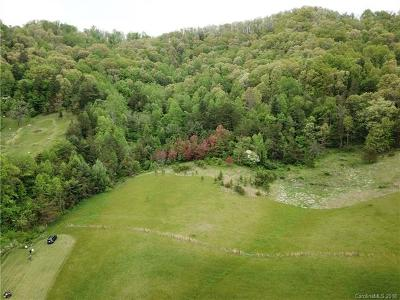 Leicester Residential Lots & Land For Sale: 9999 Worley Cove Road #2
